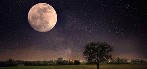 銀座の占い/てんびん座満月