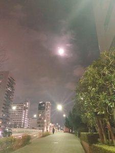 銀座の占い/獅子座の満月
