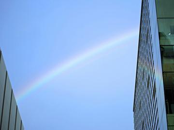【銀座店】虹を目にしたときの気持ち