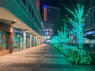 【銀座店】緑のイルミネーション