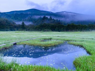 【銀座店】5月12日(水)牡牛座の新月